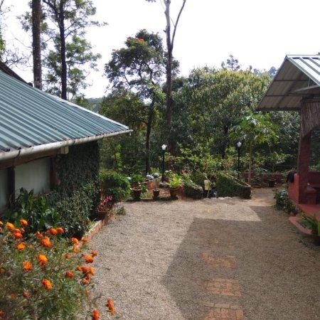Wild Elephant Eco Friendly Resort