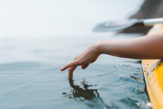 Gordon's Bay, Sydafrika: Kayak Rentals