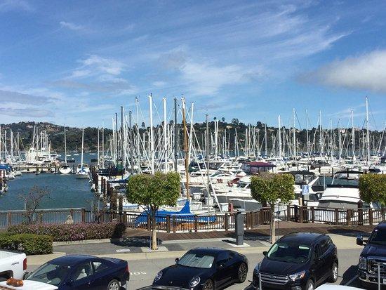Seafood Restaurants In Windsor California