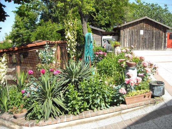 Grazzano Badoglio, Италия: Particolare fiorito dell'ingresso del Ristorante