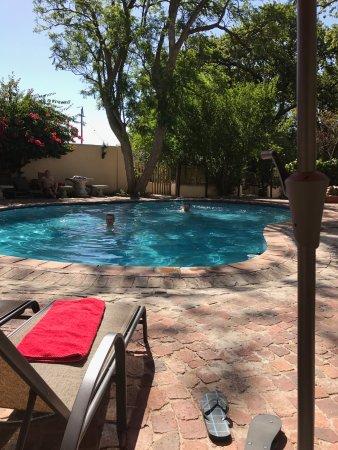 De Leeuwenhof Hotel/Guesthouse: Het zwembad