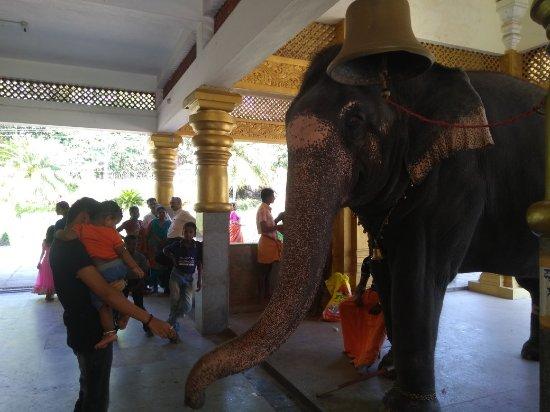 Moodabidri, India: Hosanadu Annapoorneshwari Temple