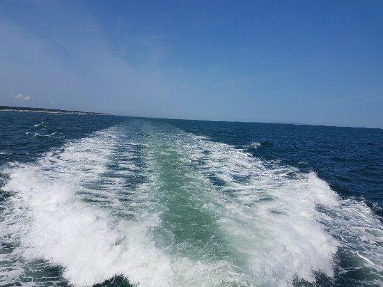 Viking Fleet Montauk Long Island