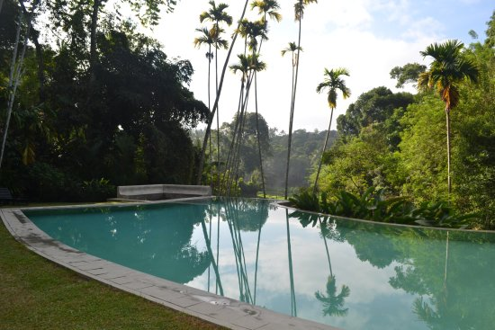The Kandy House: Pool with a view