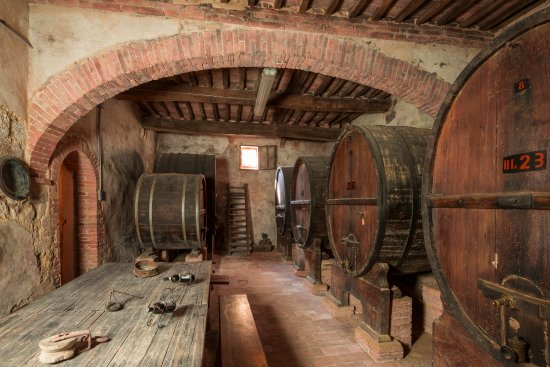 Costalpino, Италия: Wine cellar