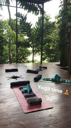 yogaplatform