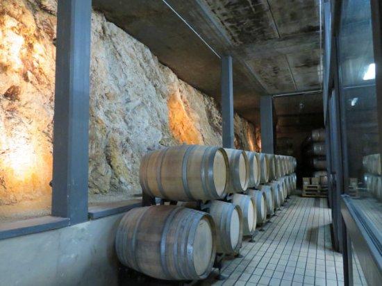 Azienda Agricola Michele Satta: Winery barrels and bedrock