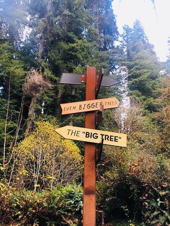 Redwood National Park: signs