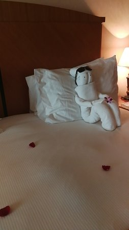 Al Raha Beach Hotel: Snapchat-717850987_large.jpg