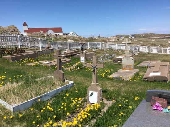 Saint-Pierre Cathedral: cimetière à côté de l'église sur l'île
