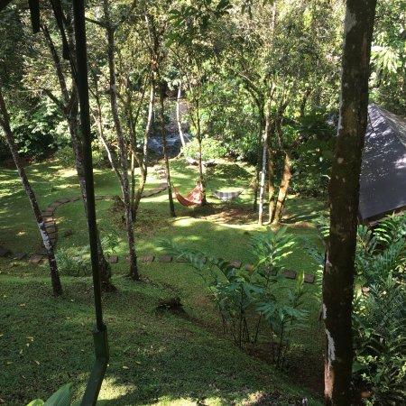 Osa Peninsula, Costa Rica: photo5.jpg