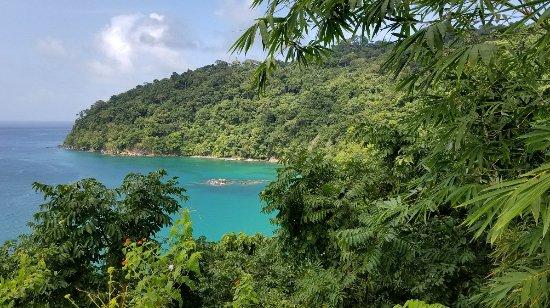 Pirate's Bay : 20180120_092918_large.jpg