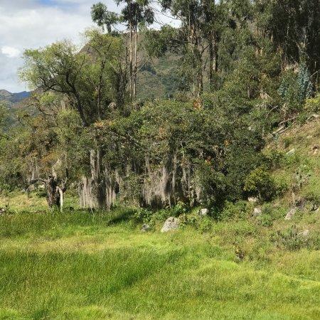 Guican, Colombia: Senderos Ecologicos