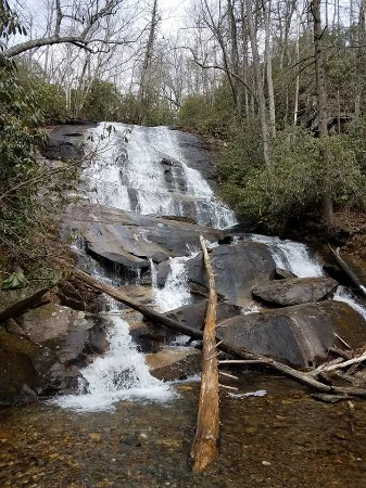 Pisgah Forest, Caroline du Nord : Cove Creek Falls