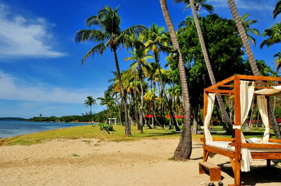Copamarina Beach Resort Spa Todo En Un Solo Lugar