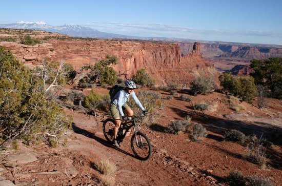 Half-Day Guided Mountain Biking Tour...