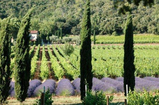 Full-Day Wine Tour around Luberon...