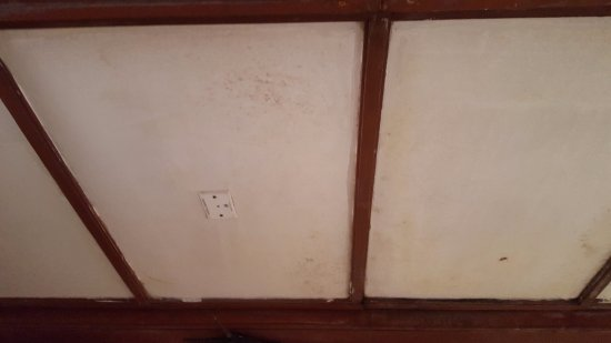Bolgatty Palace & Island Resort: Stained ceiling with mould