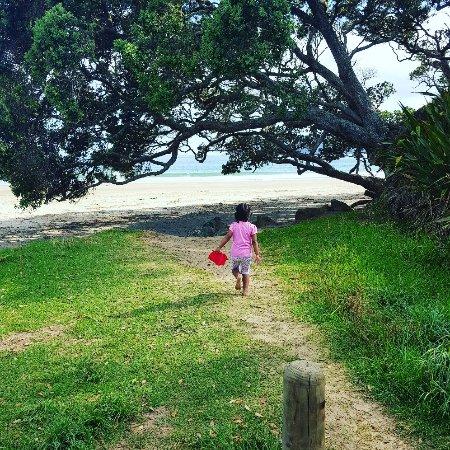 Mangonui, Nya Zeeland: Beautiful Beach! Love this Beach!