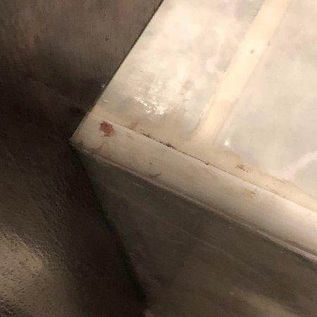 ذا جراند هوتل إيست بورن صورة فوتوغرافية