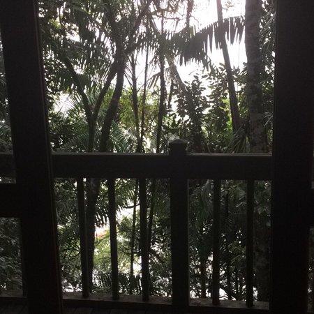 Permai Rainforest Resort: photo1.jpg