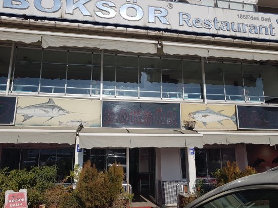 Gemlik, Turkey: Boksör