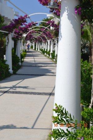 Bendis Beach Hotel Bild