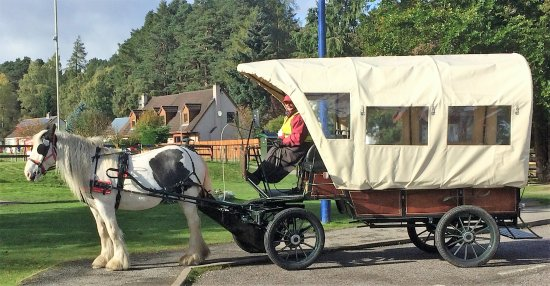 Carrbridge, UK: Our new Access for All Carriage. Wheelchair and child friendly.  Can accommodate up to 5 passeng
