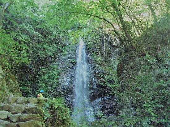 Hossawa Falls: 静寂の中 安らぐ滝の音