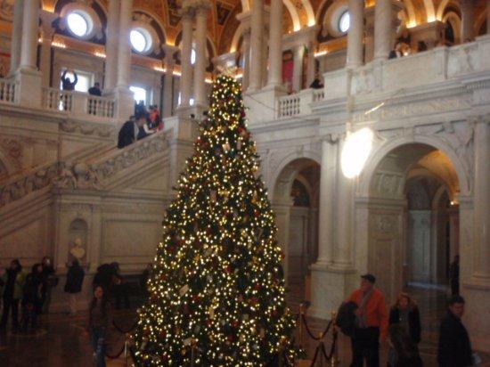 Bibliothèque du Congrès : tree