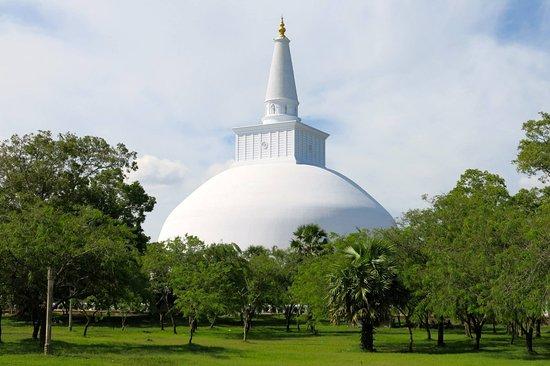 Dehiwala, Sri Lanka: Skyline Tours