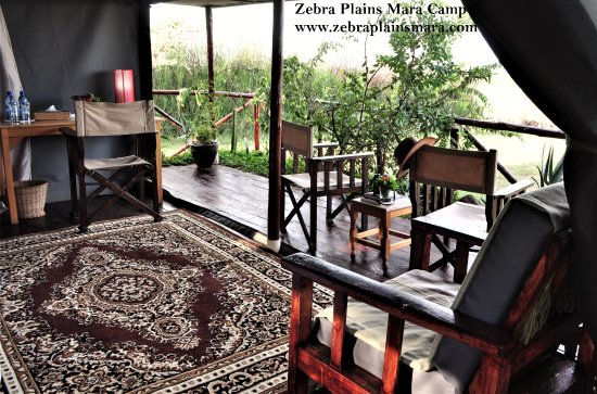 Zebra Plains Mara Camp Photo