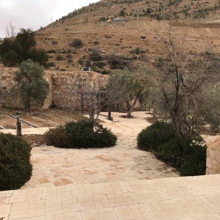 Petra hotel experience