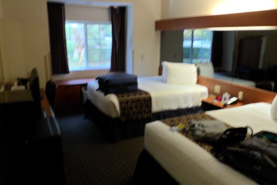 Microtel Inn & Suites by Wyndham Leesburg/Mt Dora: The room (slightly blurred)