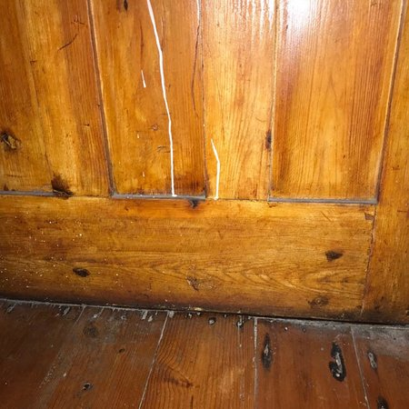 Whale Coast Lodge : Spiders and webs, old and grimy, dirt everywhere.