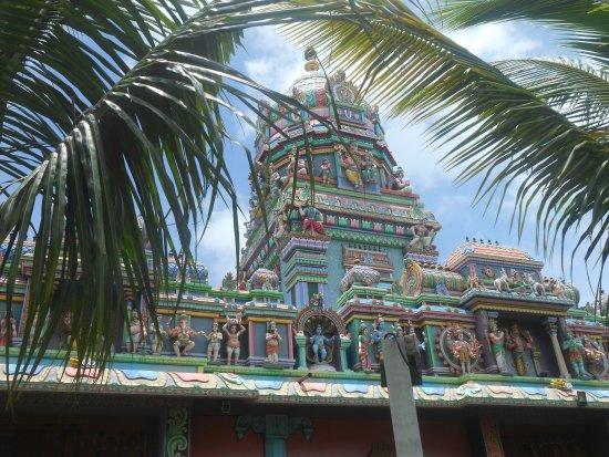 Temple Tamoul Narassingua Perournal: Temple
