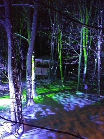 Fortezza: Сказочный лес.