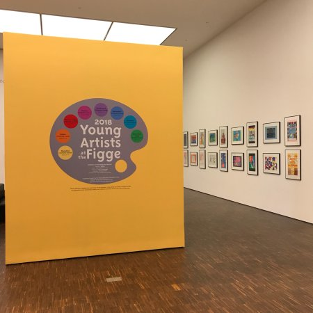 Figge Art Museum: Exhibits as of January 2018. Local artists to International know Arts.  Great children's program