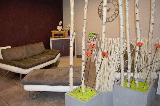 Vic-en-Bigorre, Francia: Espace salon