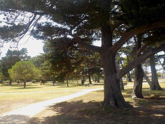 L A Parker Reserve