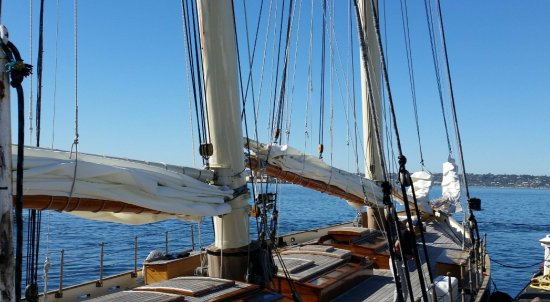 The America Picture Of Next Level Sailing San Diego