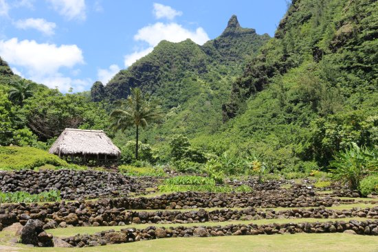 Limahuli Gardens - Picture of Limahuli Garden and Preserve, Hanalei ...