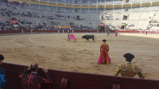 Plaza de Toros las Ventas: Bullfights in Madrid