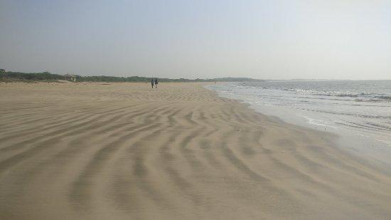 Ghogla Beach: IMG_20180124_102534_large.jpg