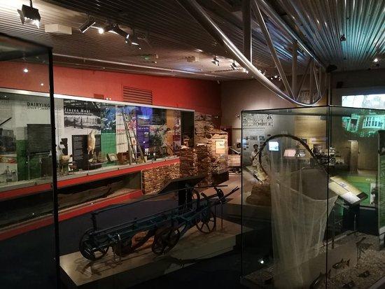 Otago Museum: IMG_20180127_161910_large.jpg
