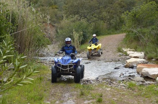Half-Day South Mallorca Off-Road Quad Bike Tour