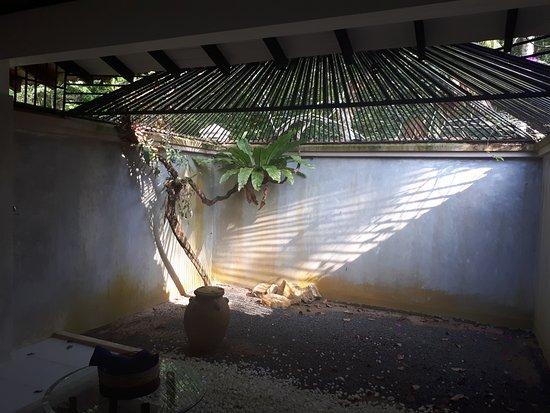 Apa Villa Illuketia: bathroom garden area, the ceiling bars keep the monkeys out