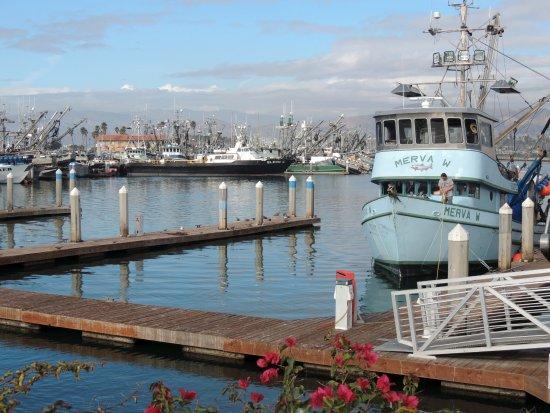 Good Seafood Restaurants In Ventura Ca