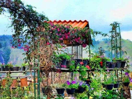 Merveilleux Ella Flower Garden Resort