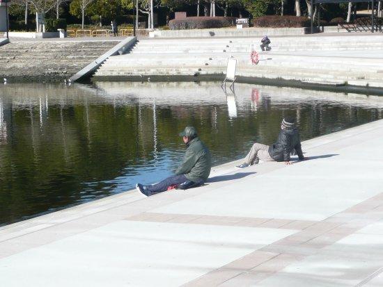 Tomioka Namiki Funadamari Park